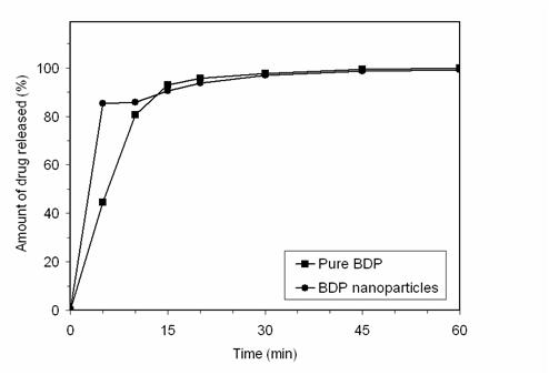 Preparation of nanoparticles consisting of methacrylic polymers and